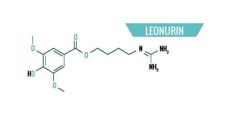 Leonotis Leonurus Chemie