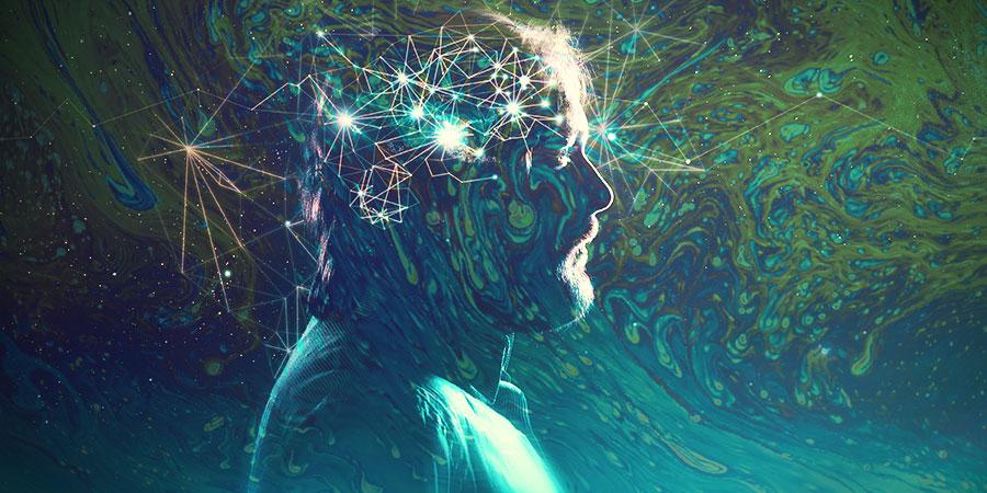Was Geht In Einem Gehirn Auf Psychedelischen Drogen Vor?
