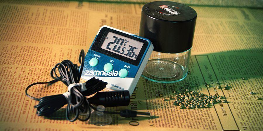 Faktoren, Die Bei Der Lagerung Von Cannabissamen Beachtet Werden Sollten
