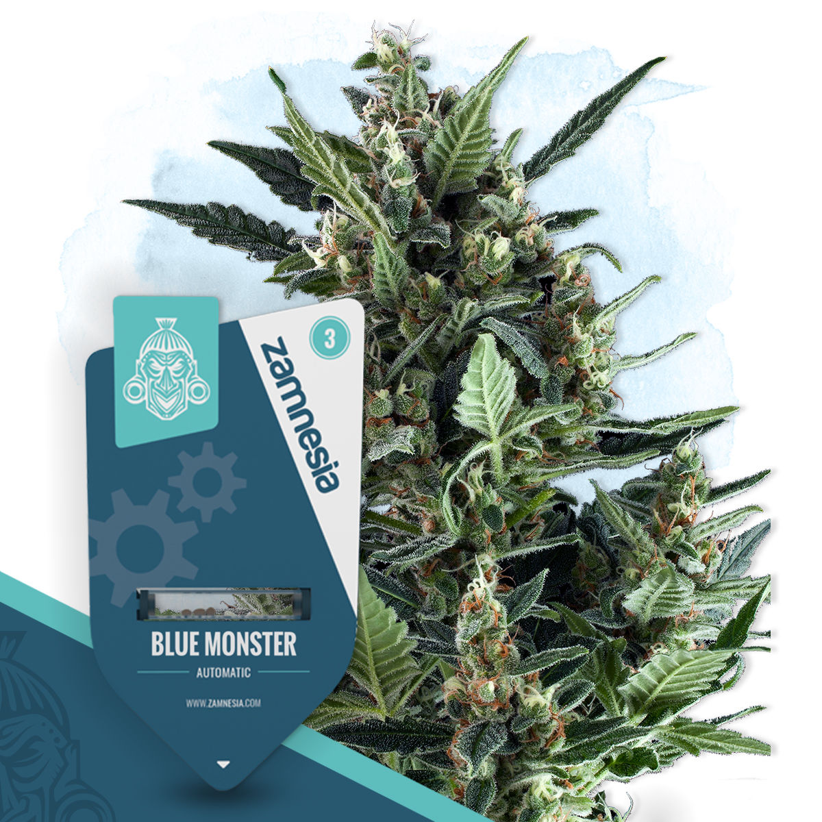 Blue Monster Automatic (Zamnesia Seeds)