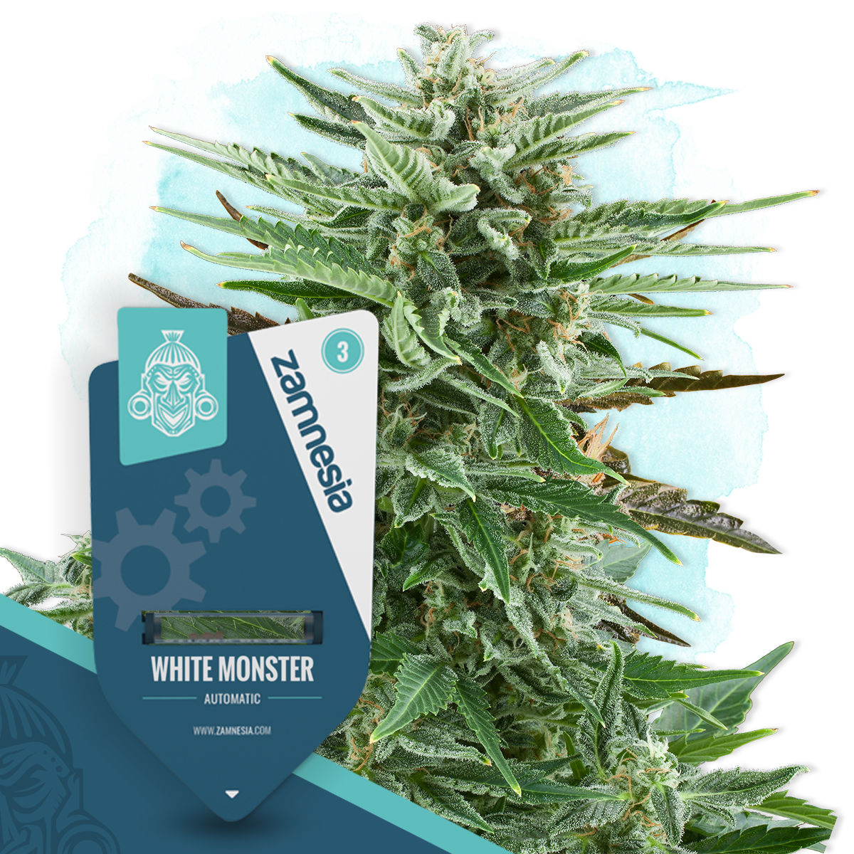 White Monster Automatic (Zamnesia Seeds)