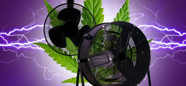 Billigeren Ventilatoren Können Sich Nach Nur Zwei Oder Drei Ernten Festsetzen (#11)