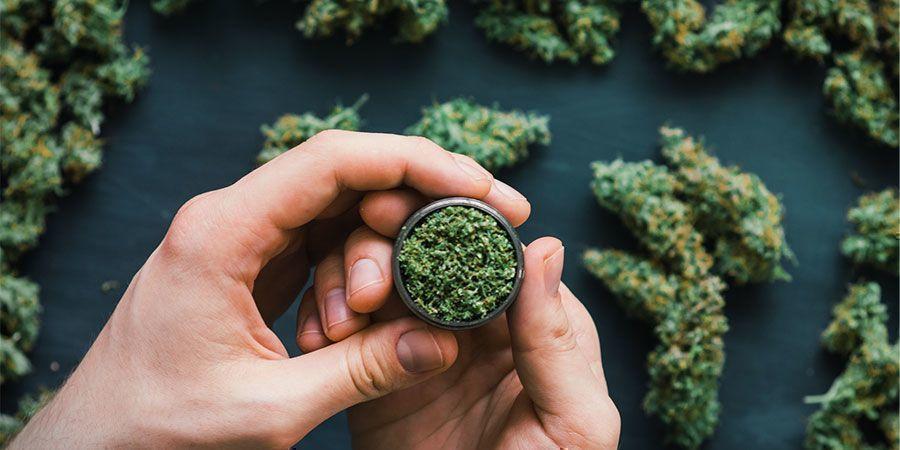 Was ist mit Cannabis? Fällt es in die psychedelische Kategorie?