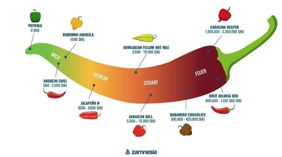 Chilis Infografik