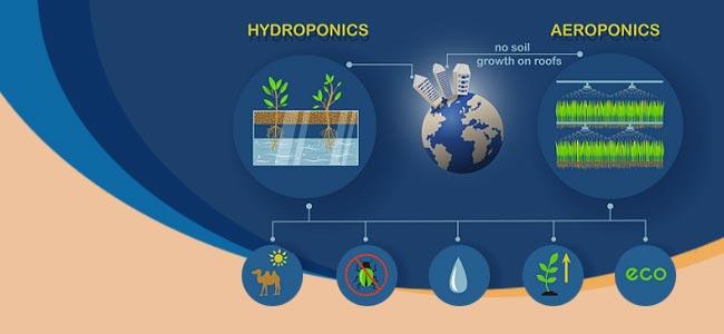 Was Sind Aeroponik Und Aero-hydroponik?