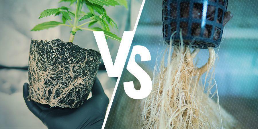 Luftschnitt vs. manuelles Beschneiden
