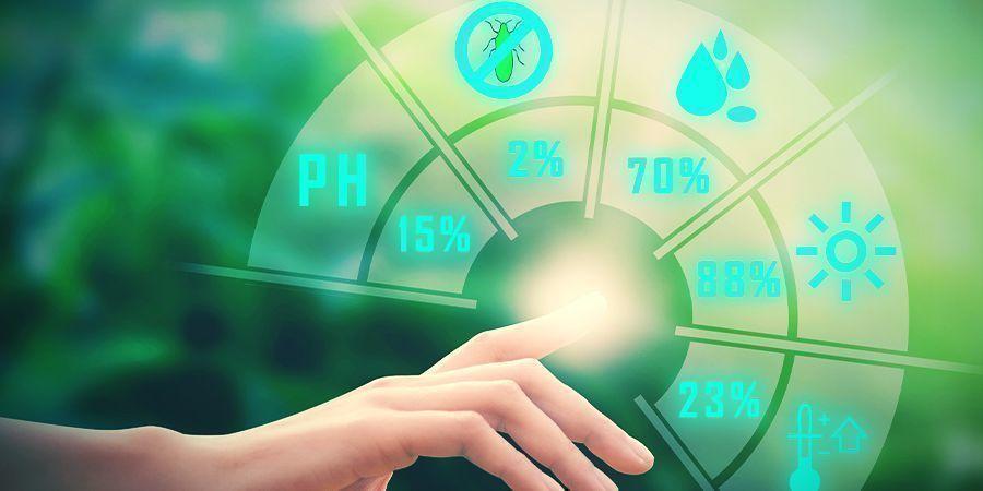 Cannabis, Magnesium und pH-Wert