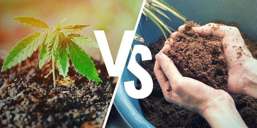 NPK: Erde vs. Kokosfasern