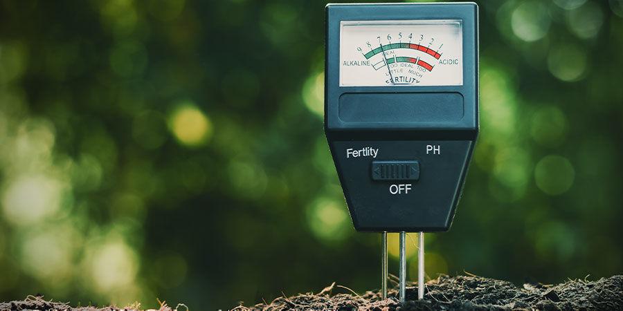 Die Bedeutung von pH-Wert und Mikronährstoffen