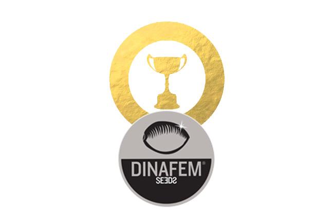 Auszeichnungen von Dinafem