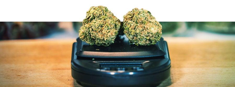 Cannabiswaagen