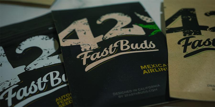 FastBuds: Experten für autoflowering Cannabisgenetik