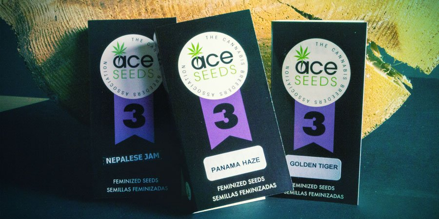 VERPACKUNG ACE Seeds