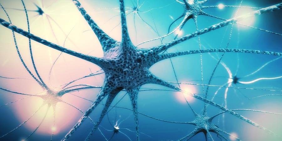 Schritt 4: Päppel Dein Nervensystem auf