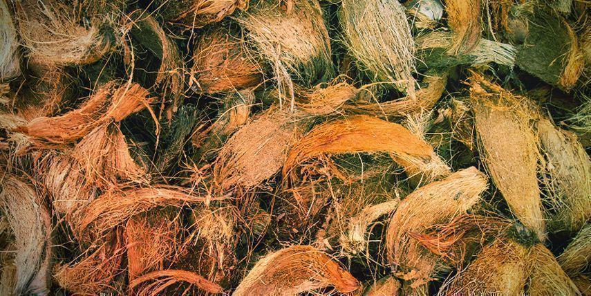 Verschiedene Arten Von Kokosfasern