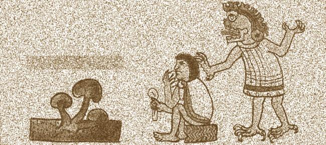 Aztec essen magischen Pilz
