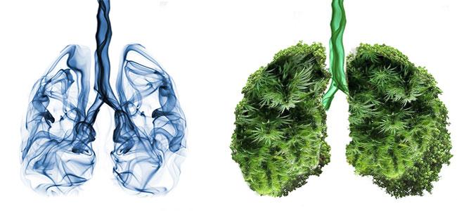 Tabak Lungen vs Vaporizer Lunge