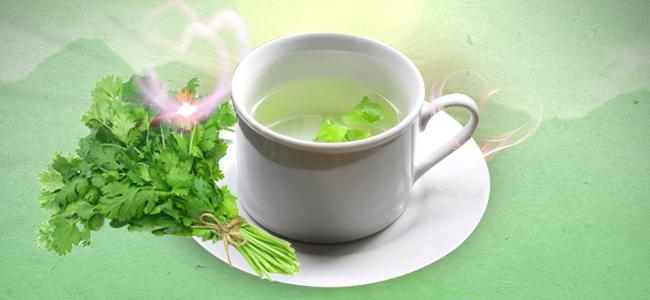 Koriander Als Tee Aufkochen Und Als Spray Anwenden
