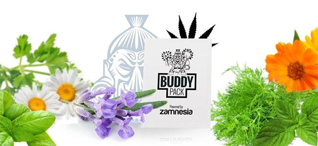 Companion Cannabis stoßen Insekten ab