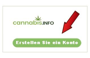 Lade Deinen Anbaubericht hoch und gewinne Cannabissamen!