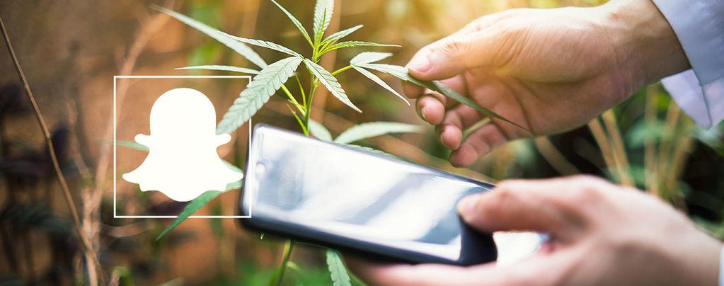 Cannabis Snapchat Profile