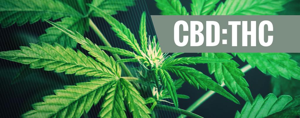 Verhältnisse CBD:THC