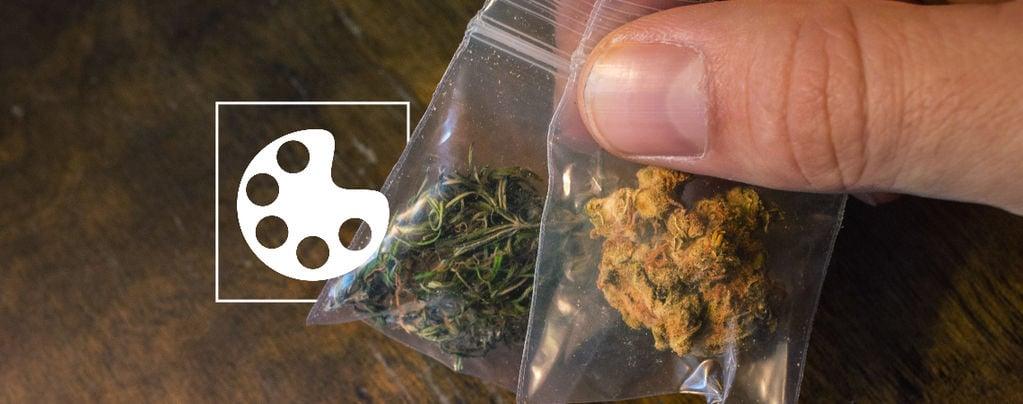 Die Verschiedenen Farben Von Cannabis Und Ihre Bedeutung