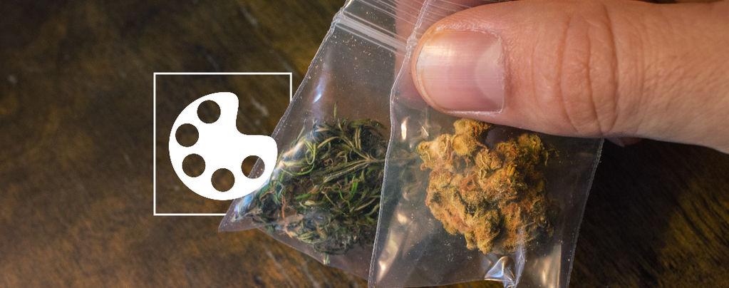 Die Verschiedenen Farben Von Cannabis