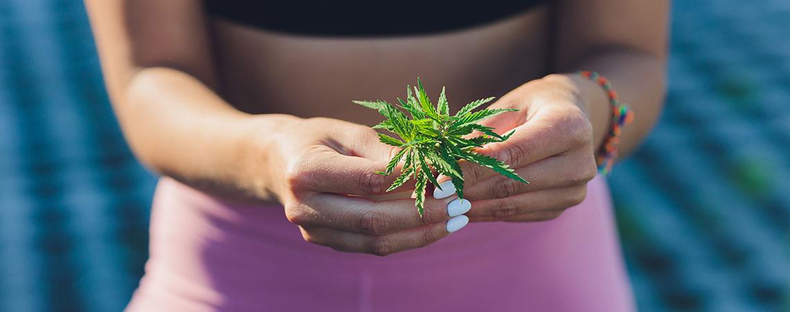Cannabis Helfen Gewicht Reduzieren