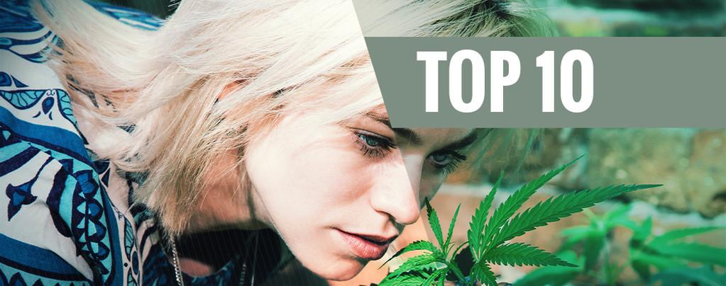 Top 10 der geruchsarmen Cannabissorten