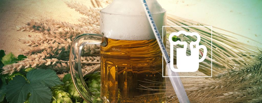 Hydrometer Vinoferm: 3 Skalen (Bier)