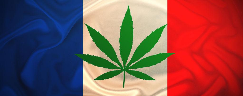 Frankreich Testet Ab 2021 Die Abgabe Von Kostenlosem Medizinischem Cannabis