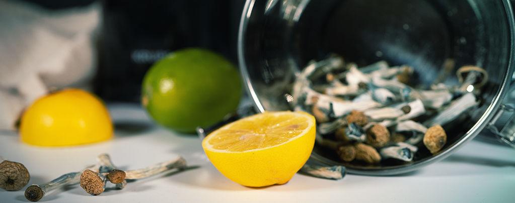 Zitronenmethode Trip