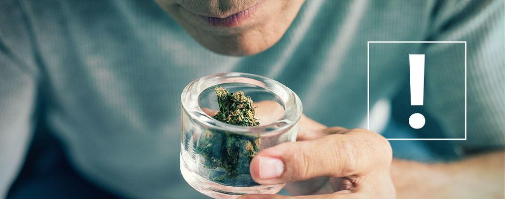 Verunreinigungen Von Cannabisblüten