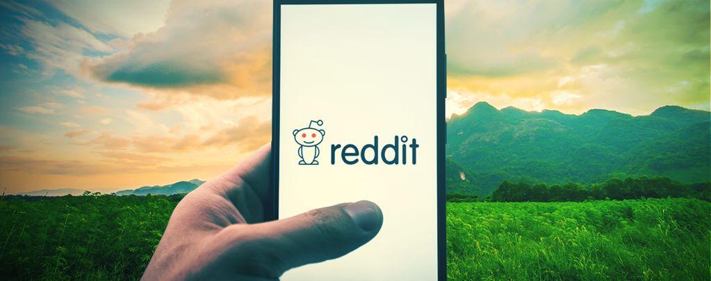 Die Top 10 Weed-Communities Auf Reddit
