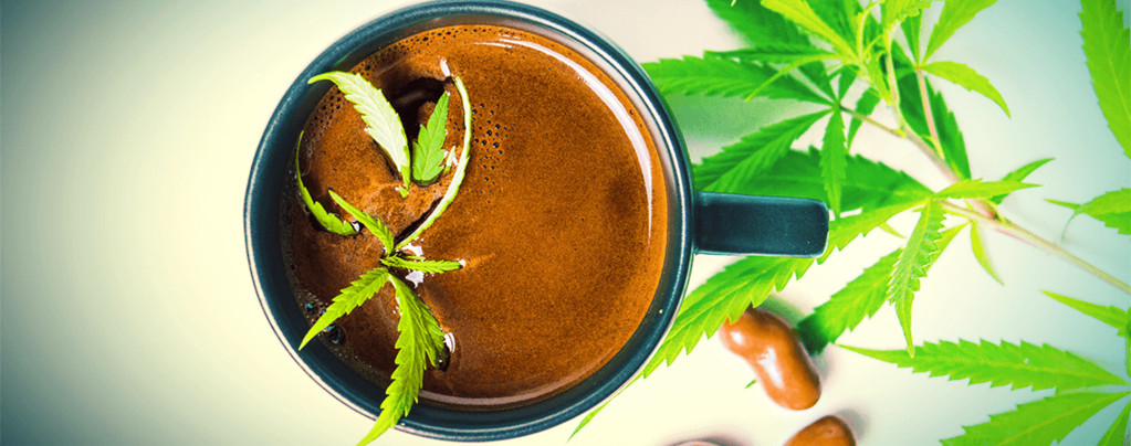 Wie Man Cannabis Kaffee Macht - Zamnesia Blog