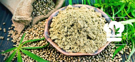 Wie Man Cannabis-Mehl Herstellt