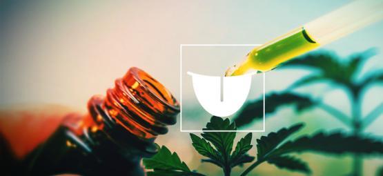 Warum eine Sublinguale Cannabis-Tinktur am besten ist