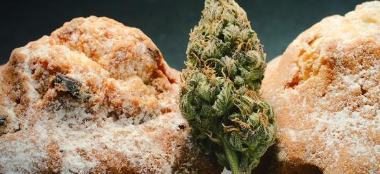 Die Niederländische Cannabis-Esswaren Renaissance