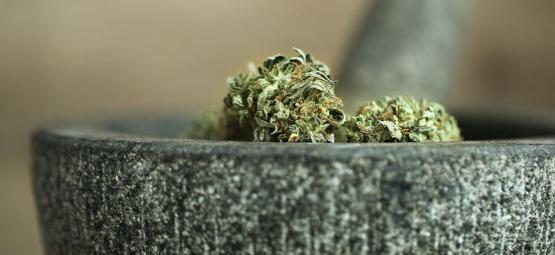 10 Wege, Cannabis Ohne Einen Grinder Zu Zerkleinern [2020 Update]
