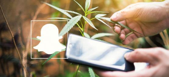 9 Cannabis Profile, Denen Man Auf Snapchat Folgen Sollte