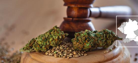 Deutschland Und Österreich: Die Rechtliche Situation Von Cannabis