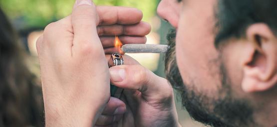 Was Cannabis Schnell Oder Langsam Abbrennen Lässt