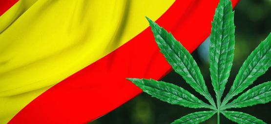 Verbreitung Der Regulation: Bilbao, Spanien Will Cannabis Clubs Regulieren