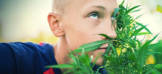 Erfahre, Wie Man High Wird, Ohne Cannabis Zu Konsumieren