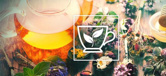 Die 10 Besten Kräuter Um Einen Tee Aufzubrühen
