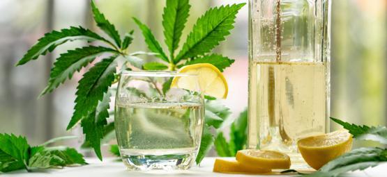 Wie Man Ginjah Macht: Mit Cannabis Angereicherter Gin Tonic