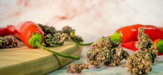 Die überraschenden Vorteile der Kombination von Cannabis und Cayennepfeffer