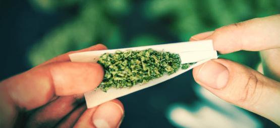 Warum Du Beim Rauchen Eines Joints Einen Filter Verwenden Solltest