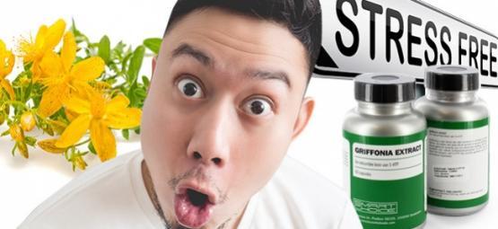 Kombination Von Johanniskraut Und 5-HTP: Risiken Und Nutzen